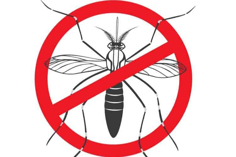 Do Fire Pits Keep Mosquitoes Away?